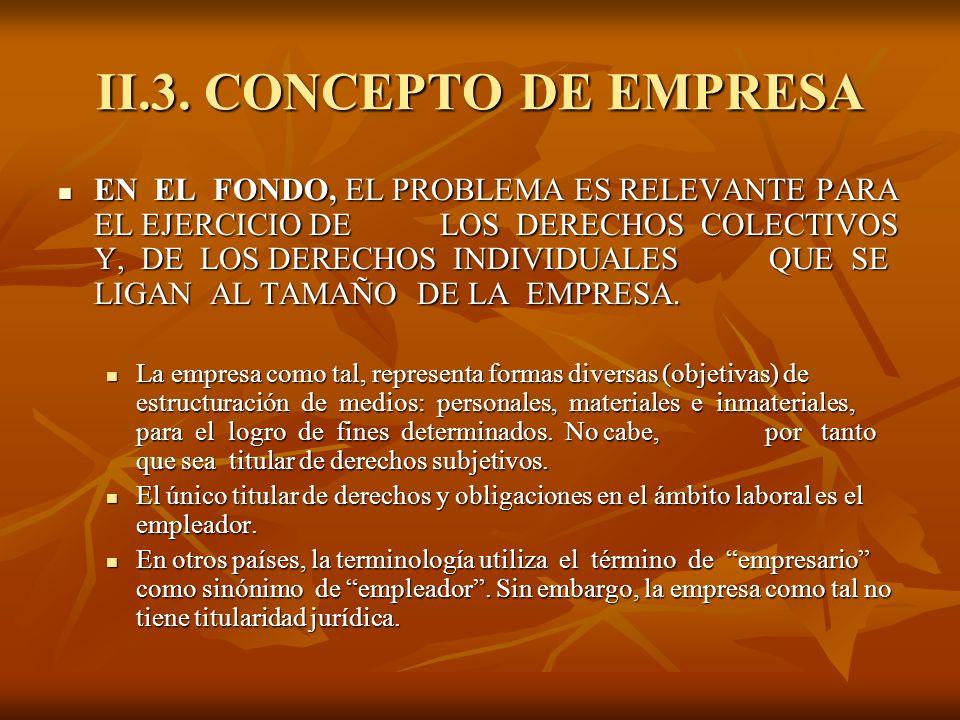 II.3. CONCEPTO DE EMPRESA EN EL FONDO, EL PROBLEMA ES RELEVANTE PARA EL EJERCICIO DE LOS DERECHOS COLECTIVOS Y, DE LOS DERECHOS INDIVIDUALES QUE SE LI