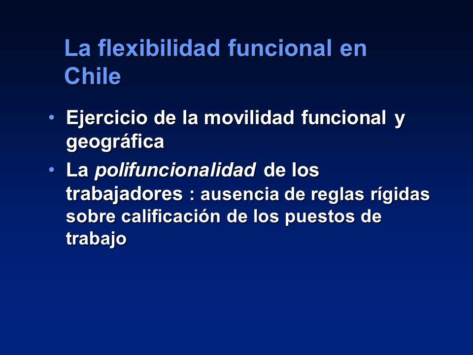 14 Ejercicio de la movilidad funcional y geográficaEjercicio de la movilidad funcional y geográfica La polifuncionalidad de los trabajadores : ausenci