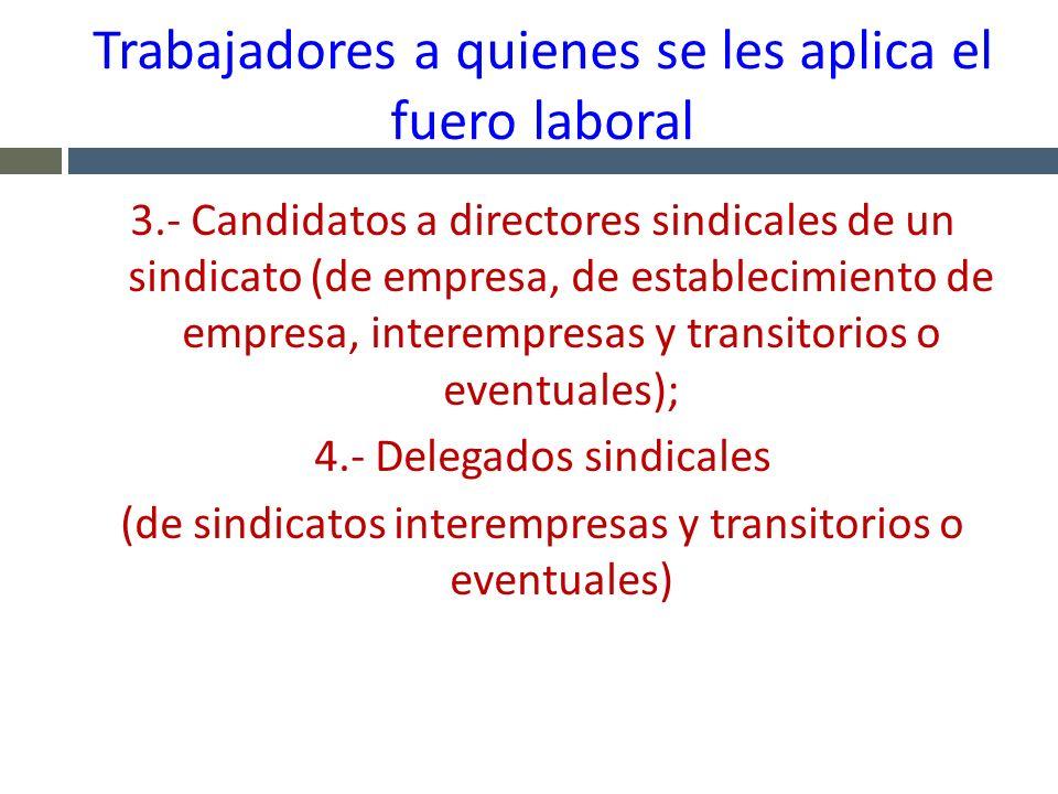 Trabajadores a quienes se les aplica el fuero laboral 3.- Candidatos a directores sindicales de un sindicato (de empresa, de establecimiento de empres
