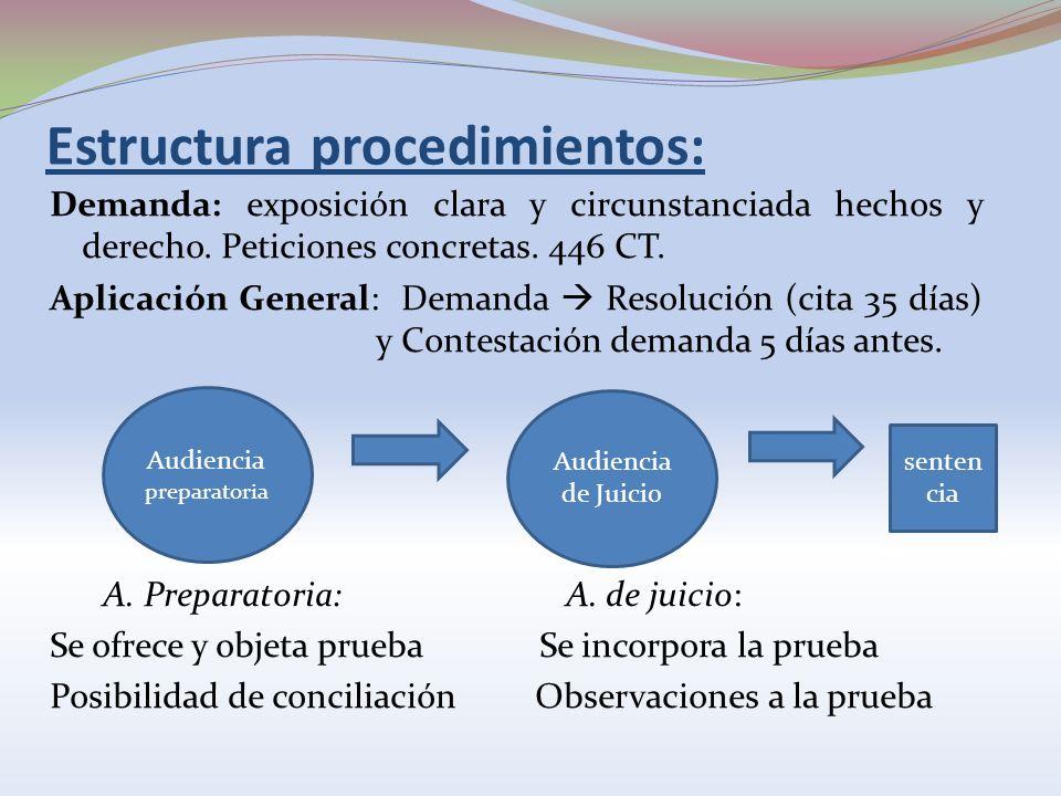 Estructura procedimientos: Demanda: exposición clara y circunstanciada hechos y derecho. Peticiones concretas. 446 CT. Aplicación General: Demanda Res