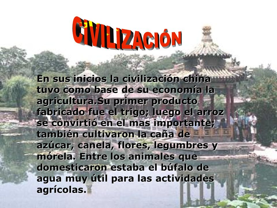 En sus inicios la civilización china tuvo como base de su economía la agricultura.Su primer producto fabricado fue el trigo; luego el arroz se convirtió en el mas importante; también cultivaron la caña de azúcar, canela, flores, legumbres y mórela.