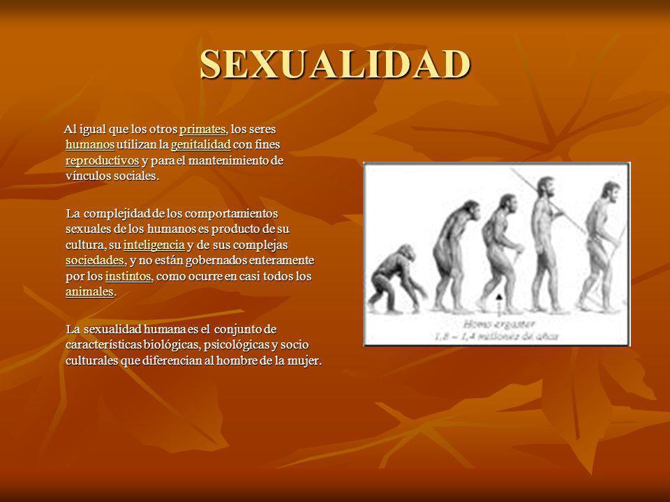 SEXUALIDAD Al igual que los otros primates, los seres humanos utilizan la genitalidad con fines reproductivos y para el mantenimiento de vínculos sociales.