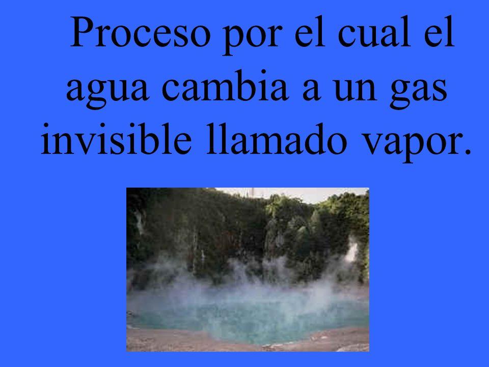 Proceso por el cual el agua cambia a un gas invisible llamado vapor.