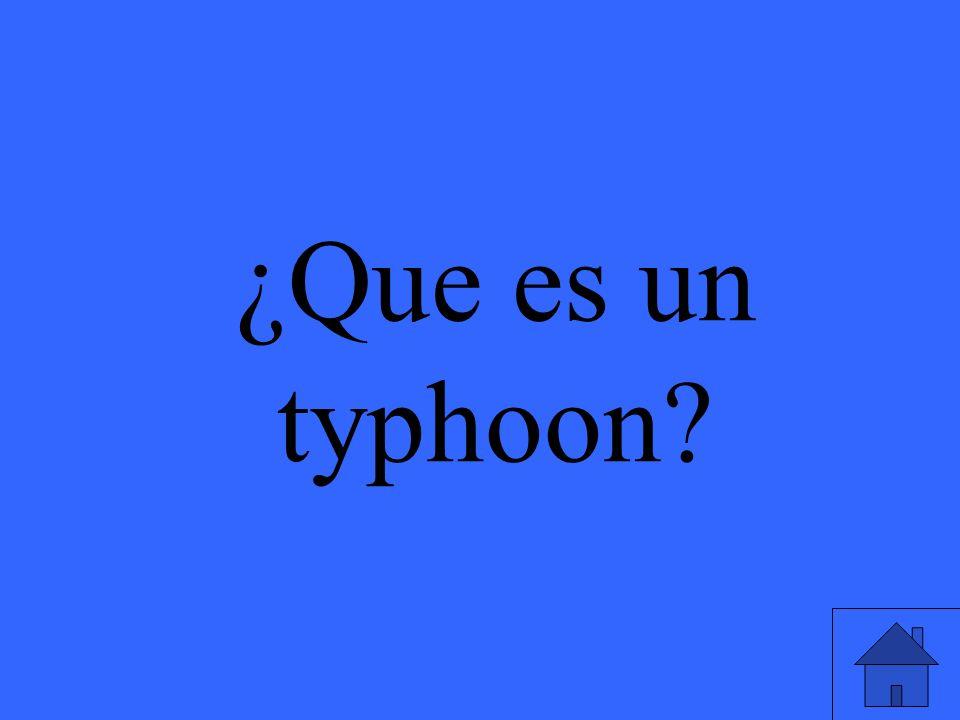 ¿Que es un typhoon?