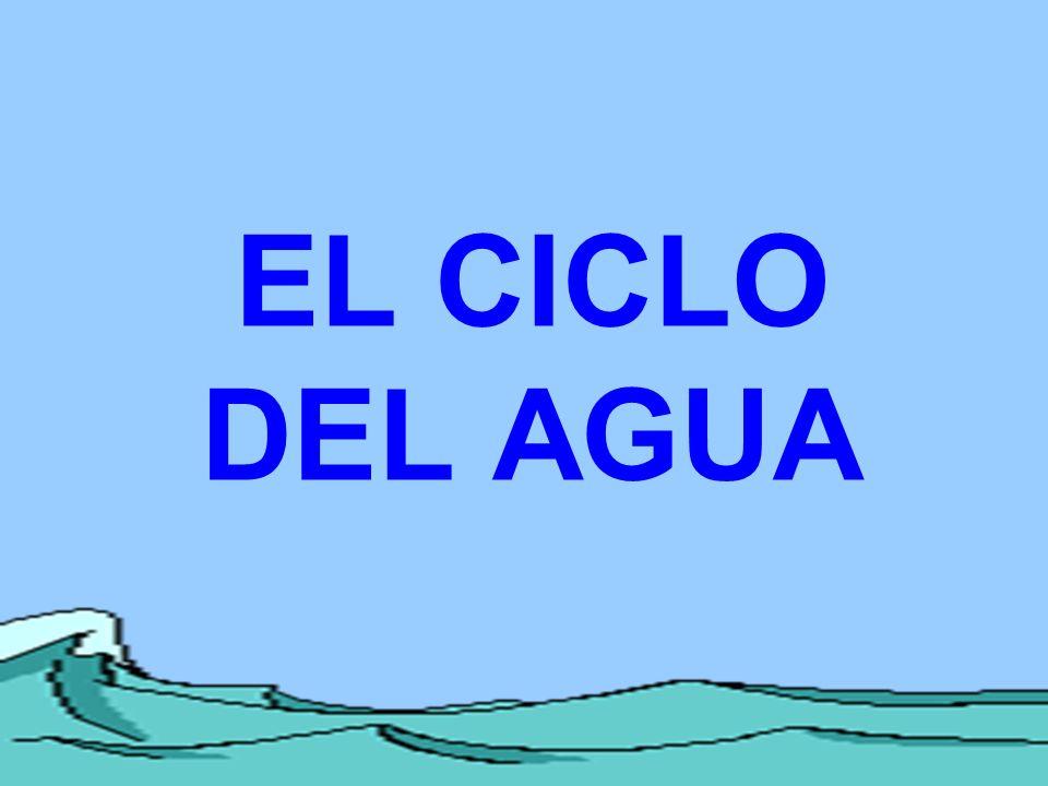 REPASO 3.¿Donde está la mayoría del agua fresca de la Tierra.
