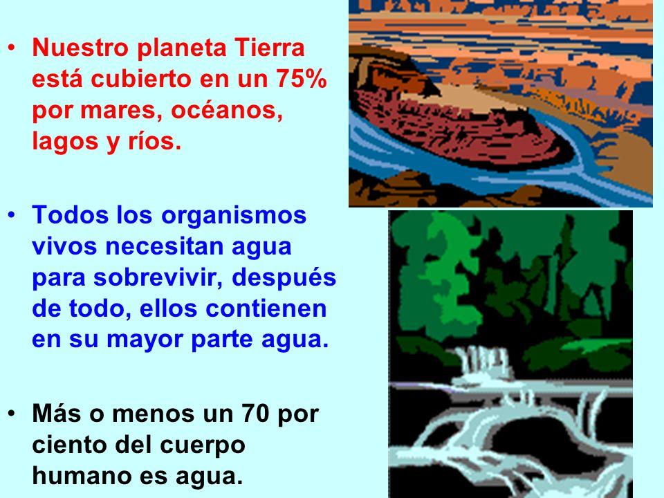 Nuestro planeta Tierra está cubierto en un 75% por mares, océanos, lagos y ríos. Todos los organismos vivos necesitan agua para sobrevivir, después de