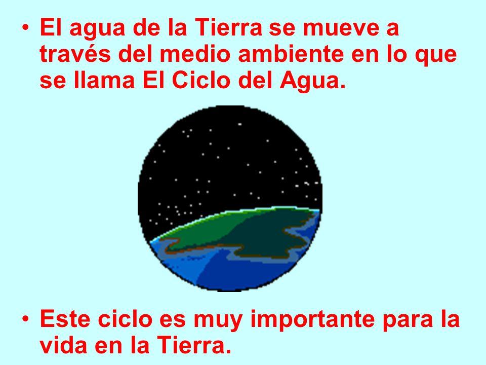 El agua de la Tierra se mueve a través del medio ambiente en lo que se llama El Ciclo del Agua. Este ciclo es muy importante para la vida en la Tierra