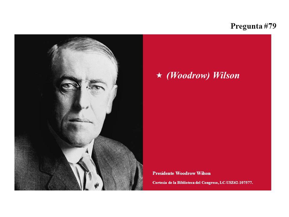 (Woodrow) Wilson Presidente Woodrow Wilson Cortesía de la Biblioteca del Congreso, LC-USZ62-107577.