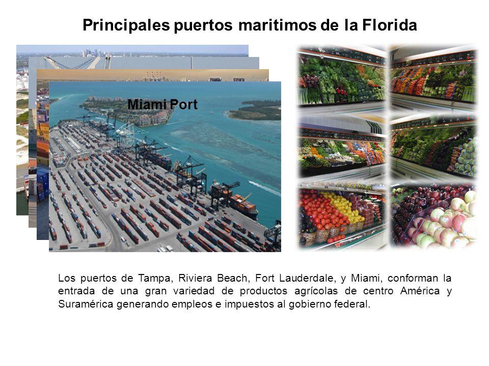 Principales puertos maritimos de la Florida Tampa PortRiviera Beach Port Fort Lauderdale Port Miami Port Los puertos de Tampa, Riviera Beach, Fort Lauderdale, y Miami, conforman la entrada de una gran variedad de productos agrícolas de centro América y Suramérica generando empleos e impuestos al gobierno federal.