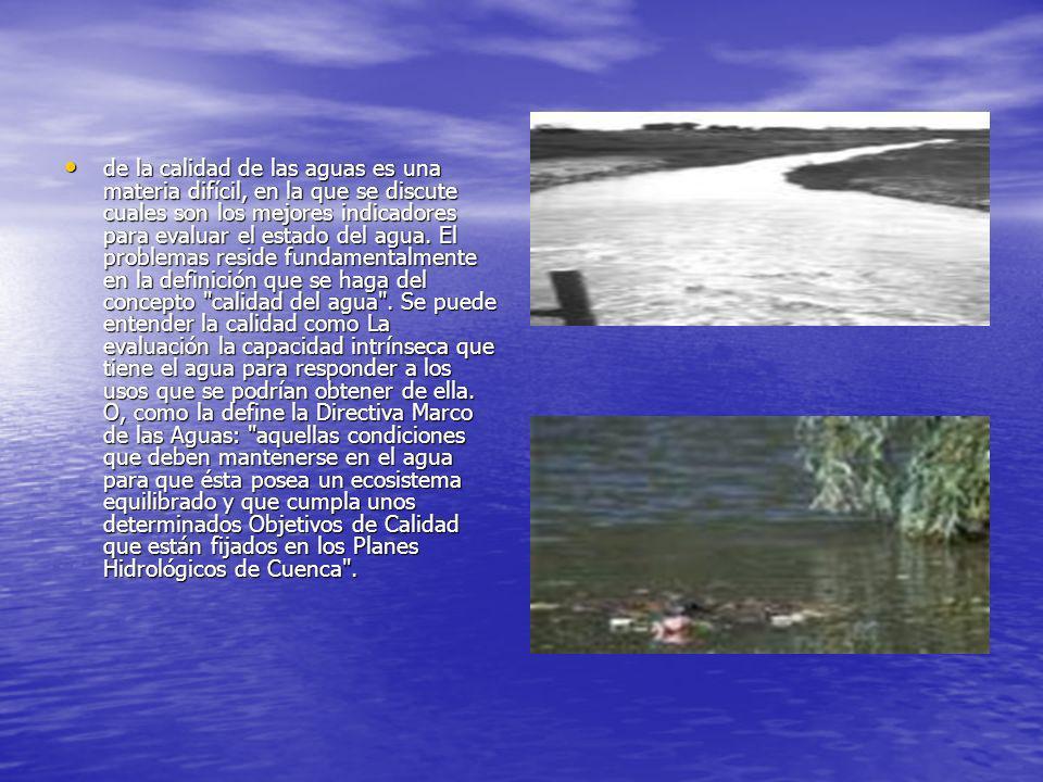 de la calidad de las aguas es una materia difícil, en la que se discute cuales son los mejores indicadores para evaluar el estado del agua. El problem