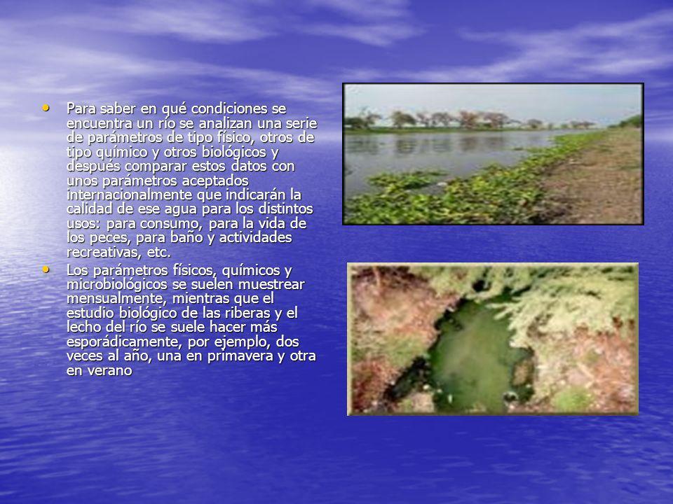 Para saber en qué condiciones se encuentra un río se analizan una serie de parámetros de tipo físico, otros de tipo químico y otros biológicos y despu