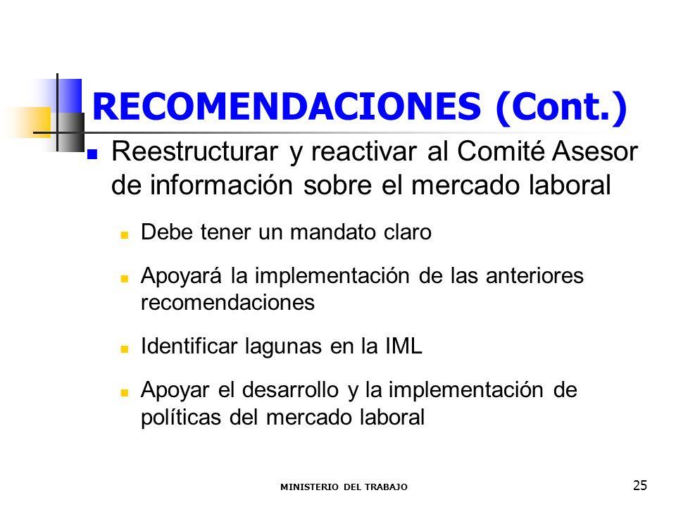 RECOMENDACIONES (Cont.) Reestructurar y reactivar al Comité Asesor de información sobre el mercado laboral Debe tener un mandato claro Apoyará la impl