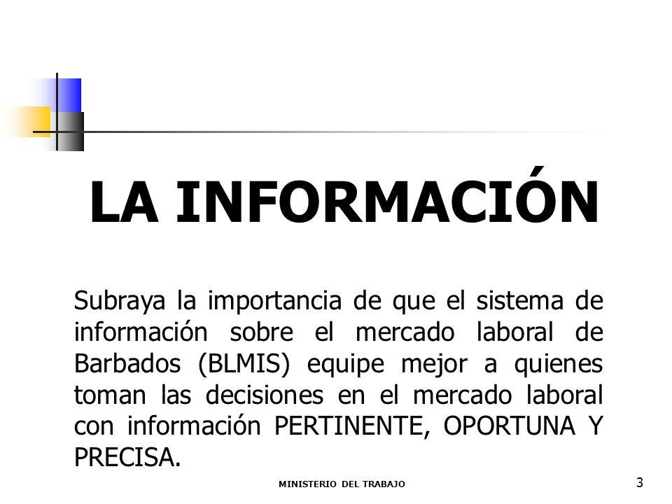 PREVISIONES INSTITUCIONALES El Ministerio del Trabajo actúa como agencia coordinadora para el manejo del flujo de información entre productores y usuarios de la IML.