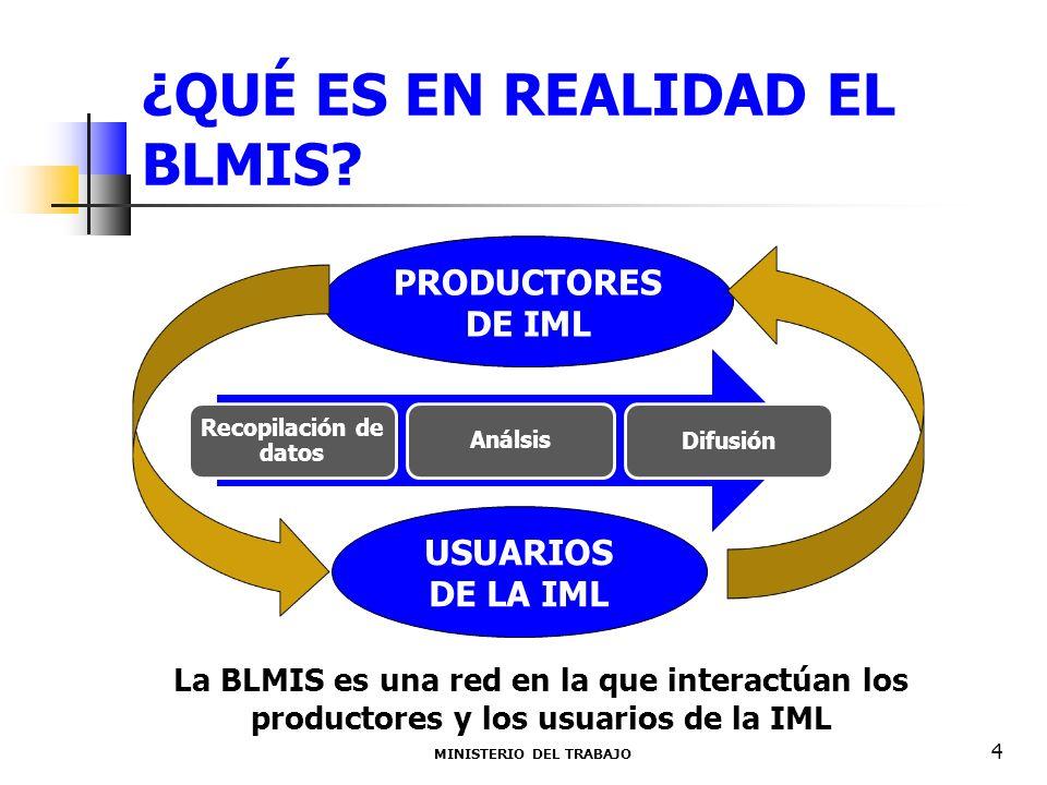 ¿QUÉ ES EN REALIDAD EL BLMIS? MINISTERIO DEL TRABAJO 4 PRODUCTORES DE IML USUARIOS DE LA IML Recopilación de datos Análsis Difusión La BLMIS es una re