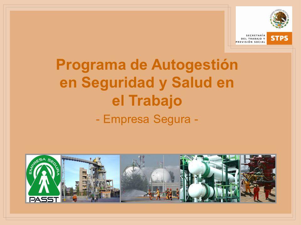 Programa de Autogestión en Seguridad y Salud en el Trabajo - Empresa Segura -