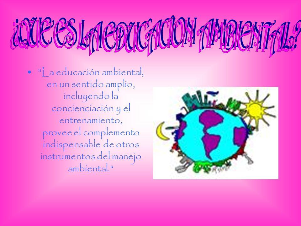 La educación ambiental, en un sentido amplio, incluyendo la concienciación y el entrenamiento, provee el complemento indispensable de otros instrumentos del manejo ambiental.