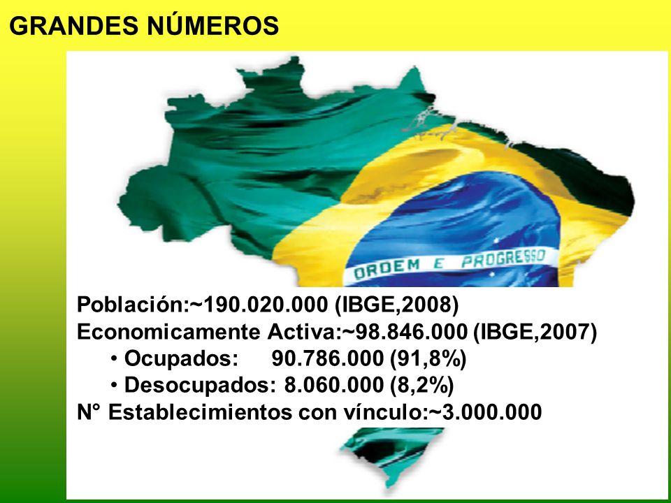 Población:~190.020.000 (IBGE,2008) Economicamente Activa:~98.846.000 (IBGE,2007) Ocupados: 90.786.000 (91,8%) Desocupados: 8.060.000 (8,2%) N° Estable