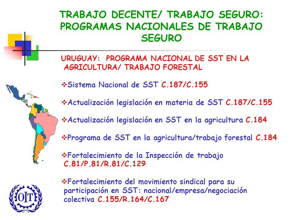 TRABAJO DECENTE/ TRABAJO SEGURO: PROGRAMAS NACIONALES DE TRABAJO SEGURO URUGUAY: PROGRAMA NACIONAL DE SST EN LA AGRICULTURA/ TRABAJO FORESTAL Sistema