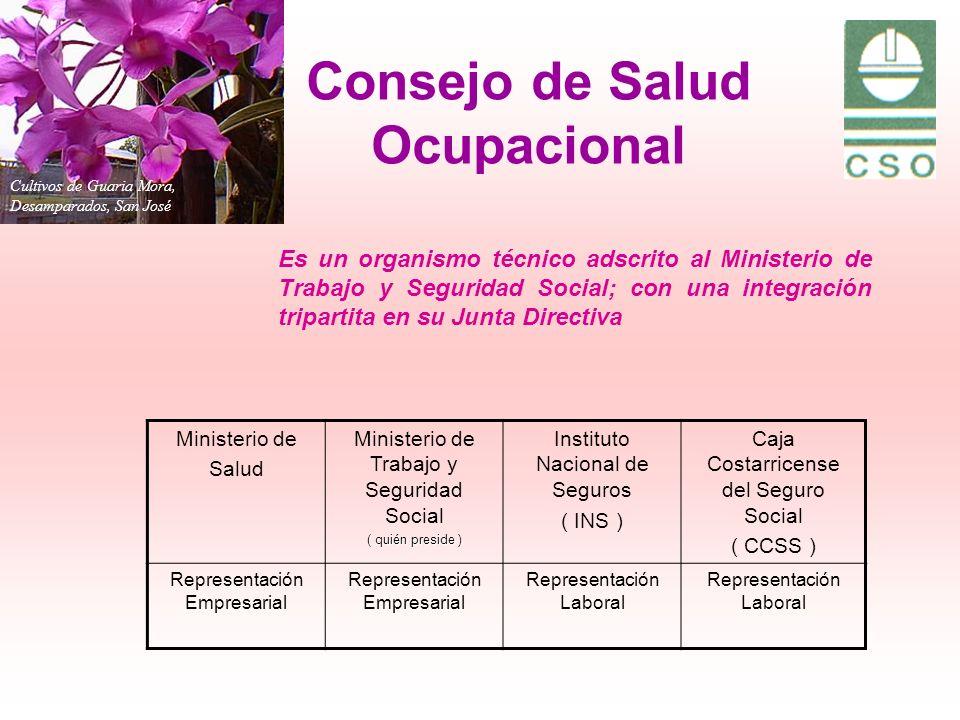 Cultivos de Guaria Mora, Desamparados, San José Consejo de Salud Ocupacional Es un organismo técnico adscrito al Ministerio de Trabajo y Seguridad Soc