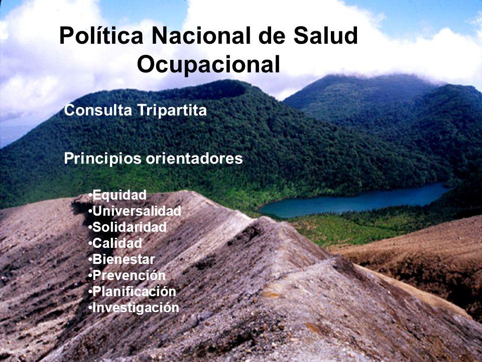 Política Nacional de Salud Ocupacional Consulta Tripartita Principios orientadores Equidad Universalidad Solidaridad Calidad Bienestar Prevención Plan
