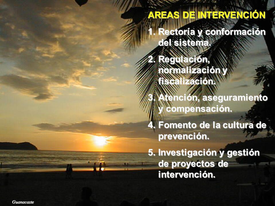 Guanacaste AREAS DE INTERVENCIÓN 1.Rectoría y conformación del sistema. 2.Regulación, normalización y fiscalización. 3.Atención, aseguramiento y compe