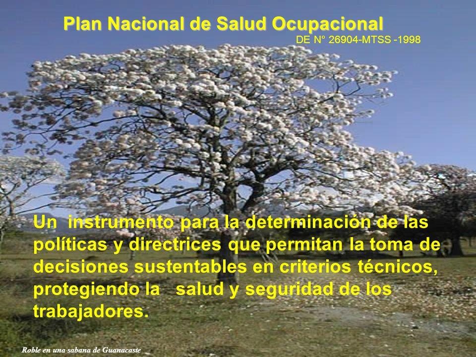 Roble en una sabana de Guanacaste Plan Nacional de Salud Ocupacional DE N° 26904-MTSS -1998 Un instrumento para la determinación de las políticas y di