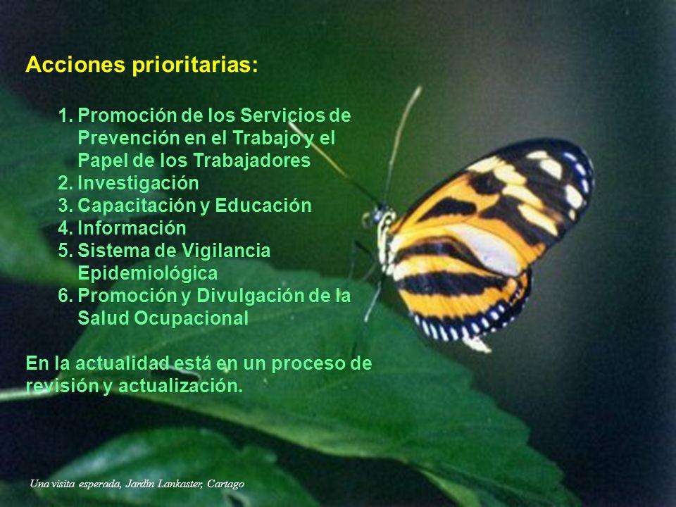 Una visita esperada, Jardín Lankaster, Cartago Acciones prioritarias: 1.Promoción de los Servicios de Prevención en el Trabajo y el Papel de los Traba