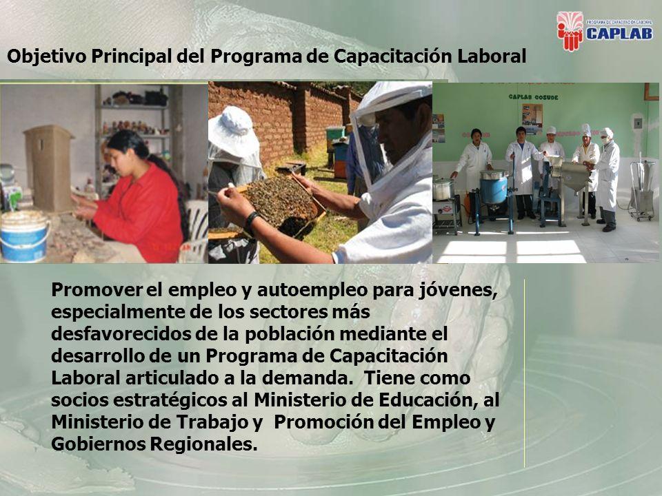 Principales Desafíos La generalización de buenas prácticas para: La Certificación de Competencias laborales que permita formación continua.