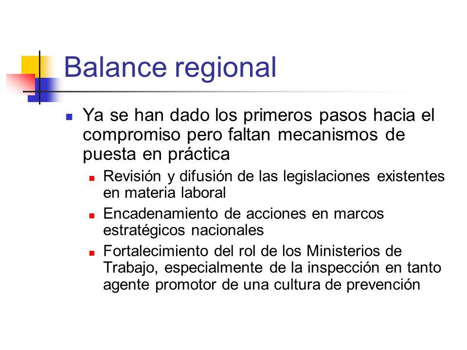 Balance regional Ya se han dado los primeros pasos hacia el compromiso pero faltan mecanismos de puesta en práctica Revisión y difusión de las legisla