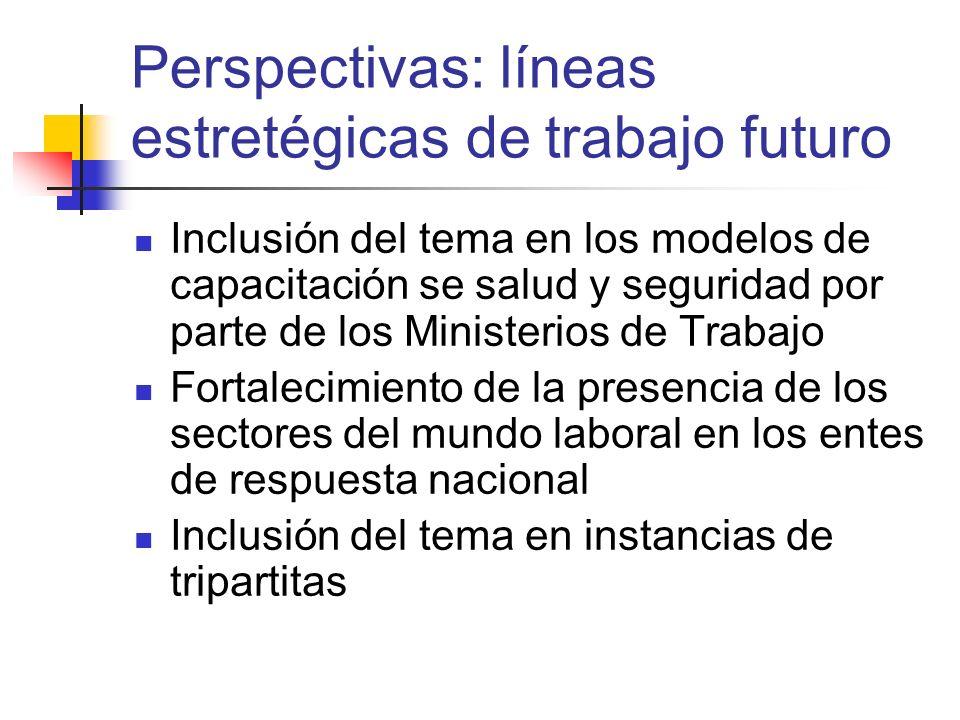 Perspectivas: líneas estretégicas de trabajo futuro Inclusión del tema en los modelos de capacitación se salud y seguridad por parte de los Ministerio