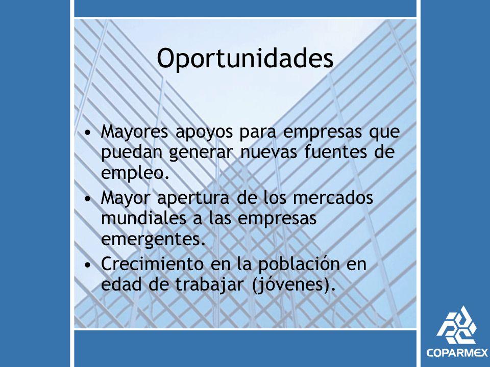 Oportunidades Mayores apoyos para empresas que puedan generar nuevas fuentes de empleo.