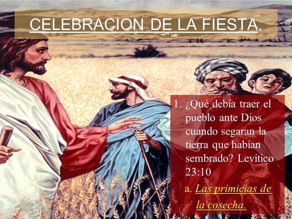 CELEBRACION DE LA FIESTA. 1.¿Qué debía traer el pueblo ante Dios cuando segaran la tierra que habían sembrado? Levítico 23:10 a. Las primicias de la c