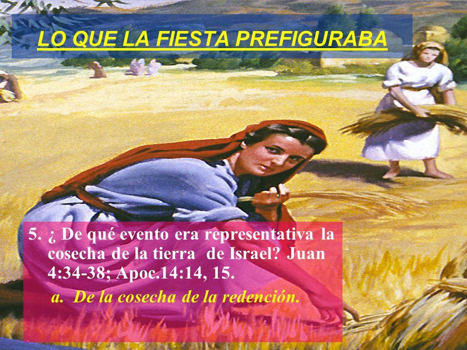 LO QUE LA FIESTA PREFIGURABA 5.¿ De qué evento era representativa la cosecha de la tierra de Israel? Juan 4:34-38; Apoc.14:14, 15. a. De la cosecha de