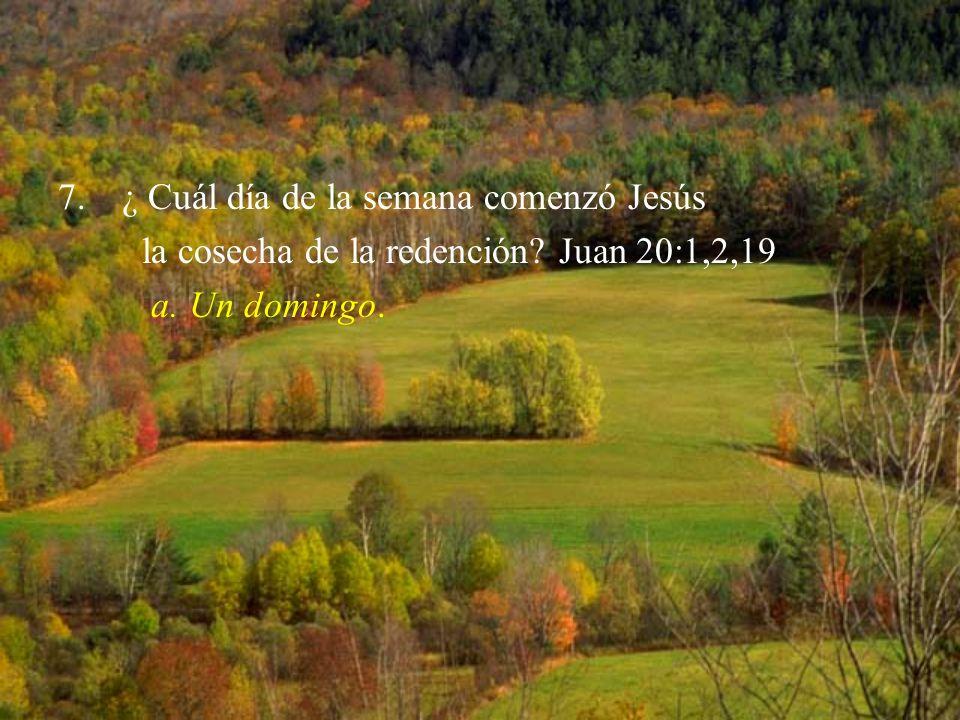 7.¿ Cuál día de la semana comenzó Jesús la cosecha de la redención? Juan 20:1,2,19 a. Un domingo.