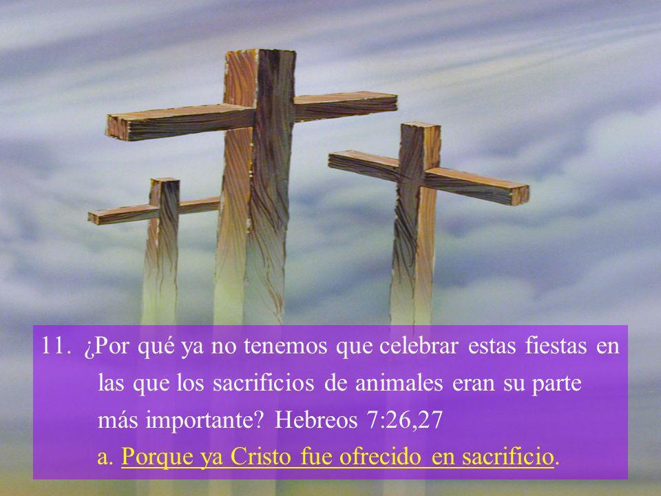 11.¿Por qué ya no tenemos que celebrar estas fiestas en las que los sacrificios de animales eran su parte más importante? Hebreos 7:26,27 a. Porque ya
