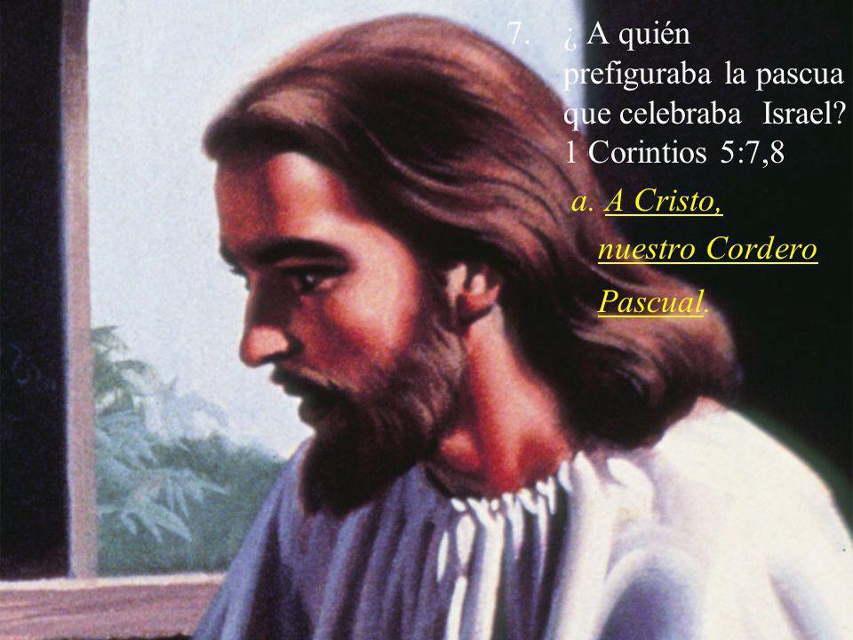 7.¿ A quién prefiguraba la pascua que celebraba Israel? 1 Corintios 5:7,8 a. A Cristo, nuestro Cordero Pascual.