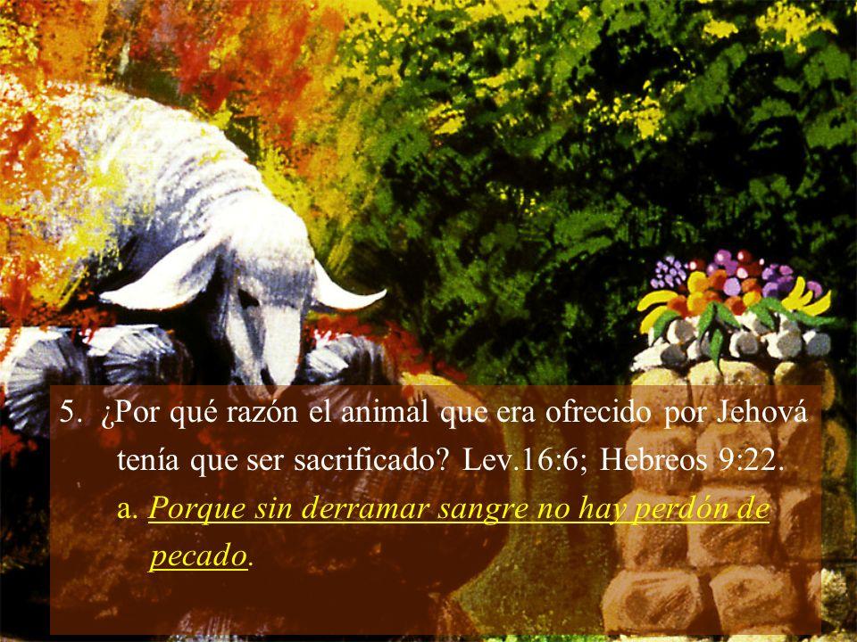 5. ¿Por qué razón el animal que era ofrecido por Jehová tenía que ser sacrificado? Lev.16:6; Hebreos 9:22. a. Porque sin derramar sangre no hay perdón