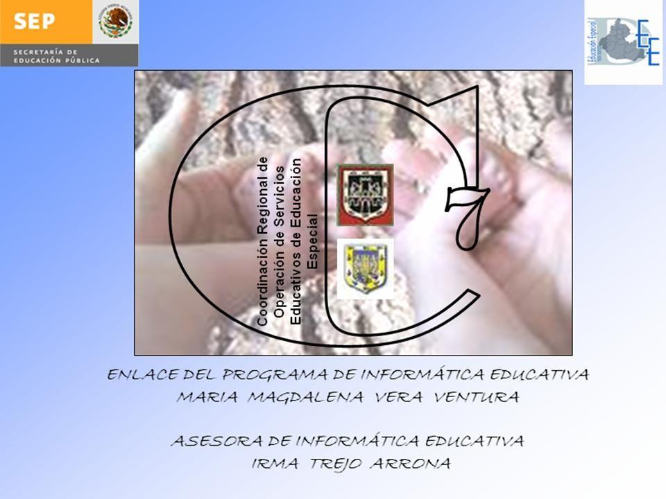 Que el 60% de los Servicios de Zonas de Supervisión de CROSEE 7, incorporen el programa de Informática Educativa como estrategia que enriquezca el proceso de enseñanza y aprendizaje.