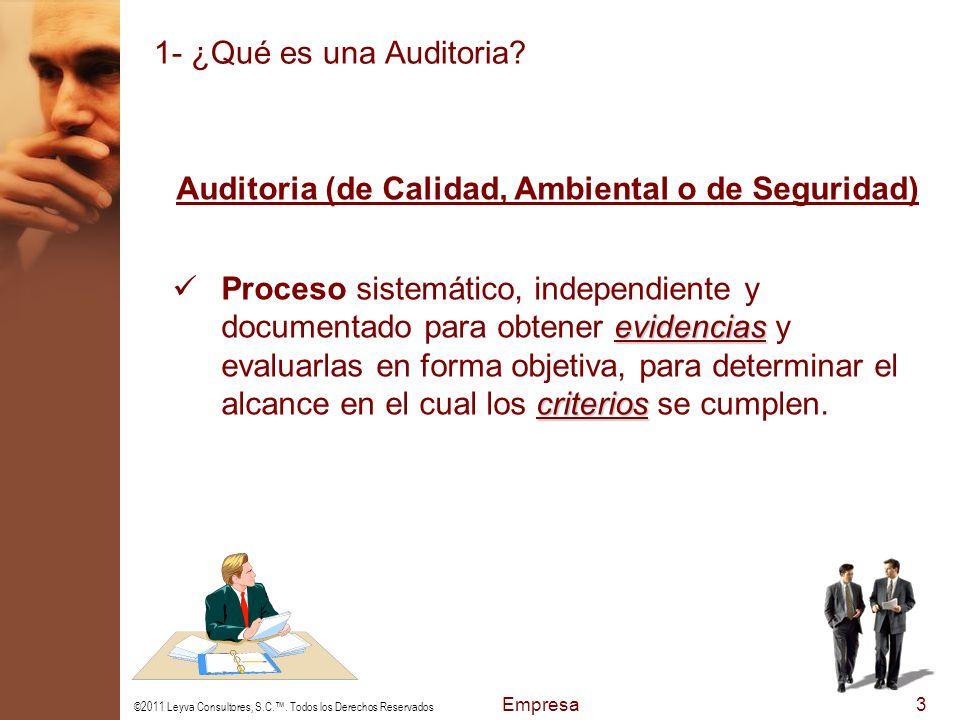©2011 Leyva Consultores, S.C..Todos los Derechos Reservados Empresa4 1- ¿Qué es una Auditoria.