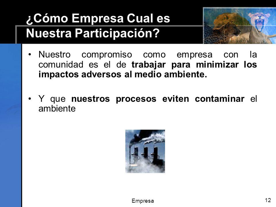 Empresa 12 ¿Cómo Empresa Cual es Nuestra Participación.