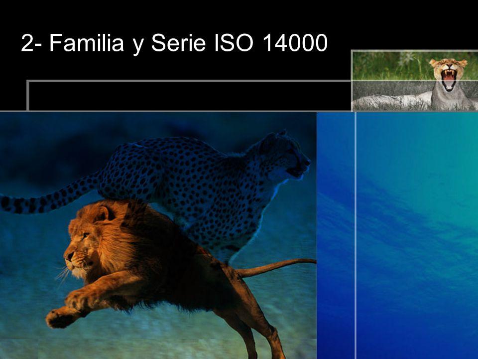 2- Familia y Serie ISO 14000
