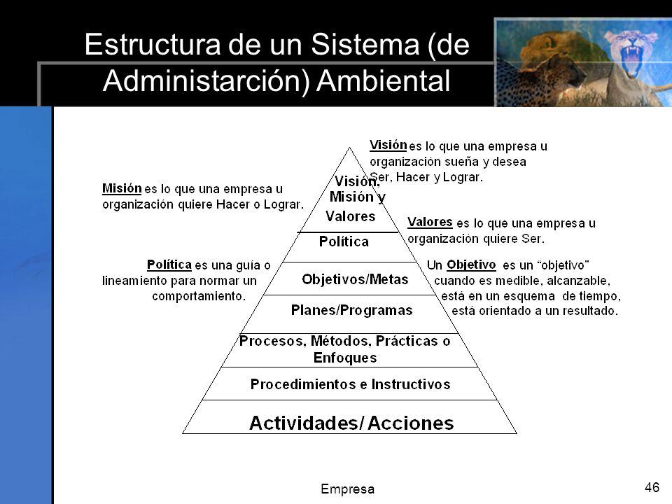 Empresa 46 Estructura de un Sistema (de Administarción) Ambiental