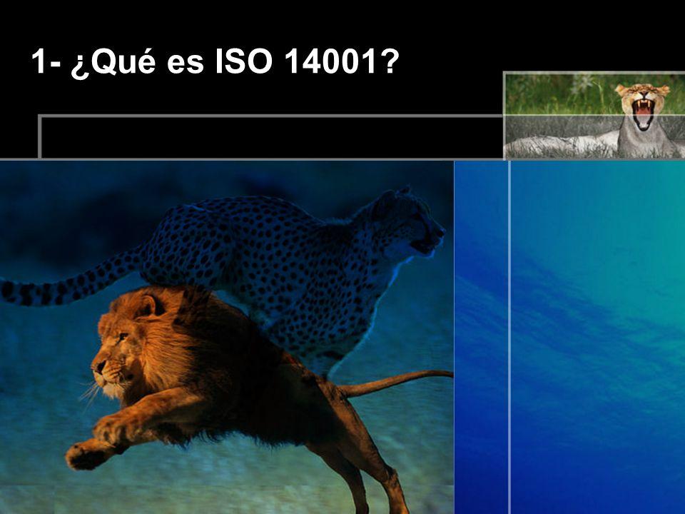 1- ¿Qué es ISO 14001?