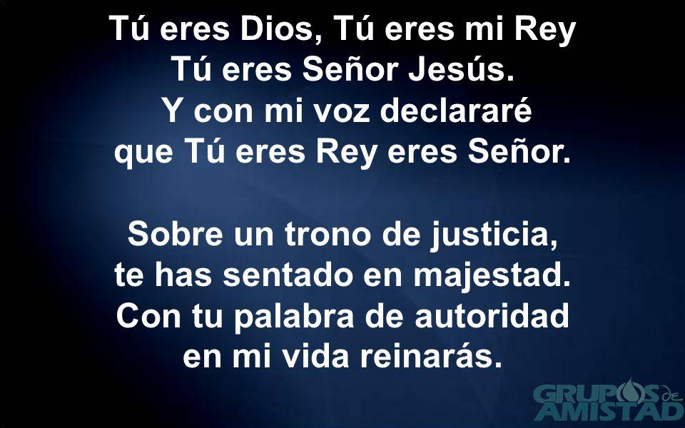 Tú eres Dios, Tú eres mi Rey Tú eres Señor Jesús. Y con mi voz declararé que Tú eres Rey eres Señor. Sobre un trono de justicia, te has sentado en maj