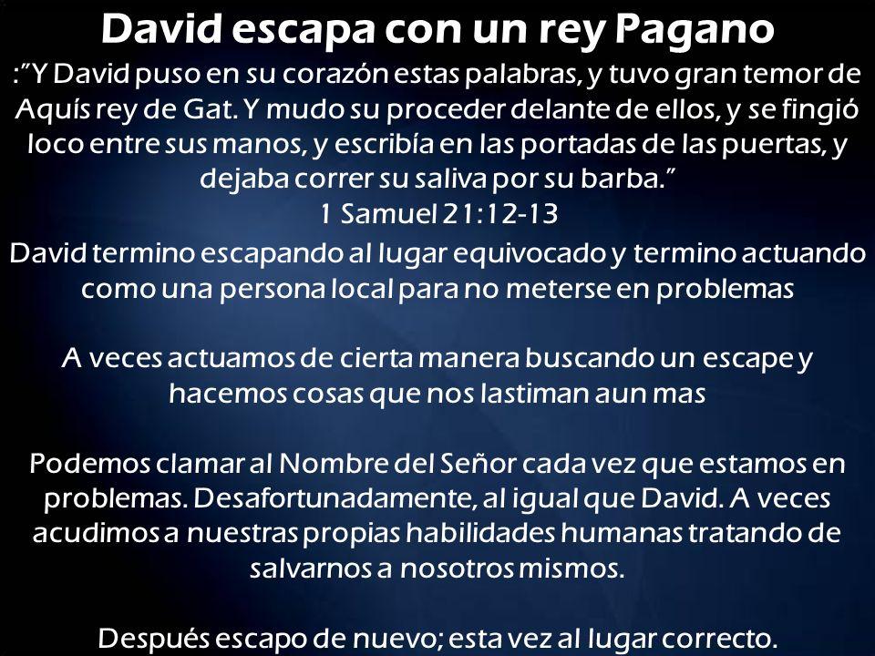David escapa con un rey Pagano David termino escapando al lugar equivocado y termino actuando como una persona local para no meterse en problemas A ve