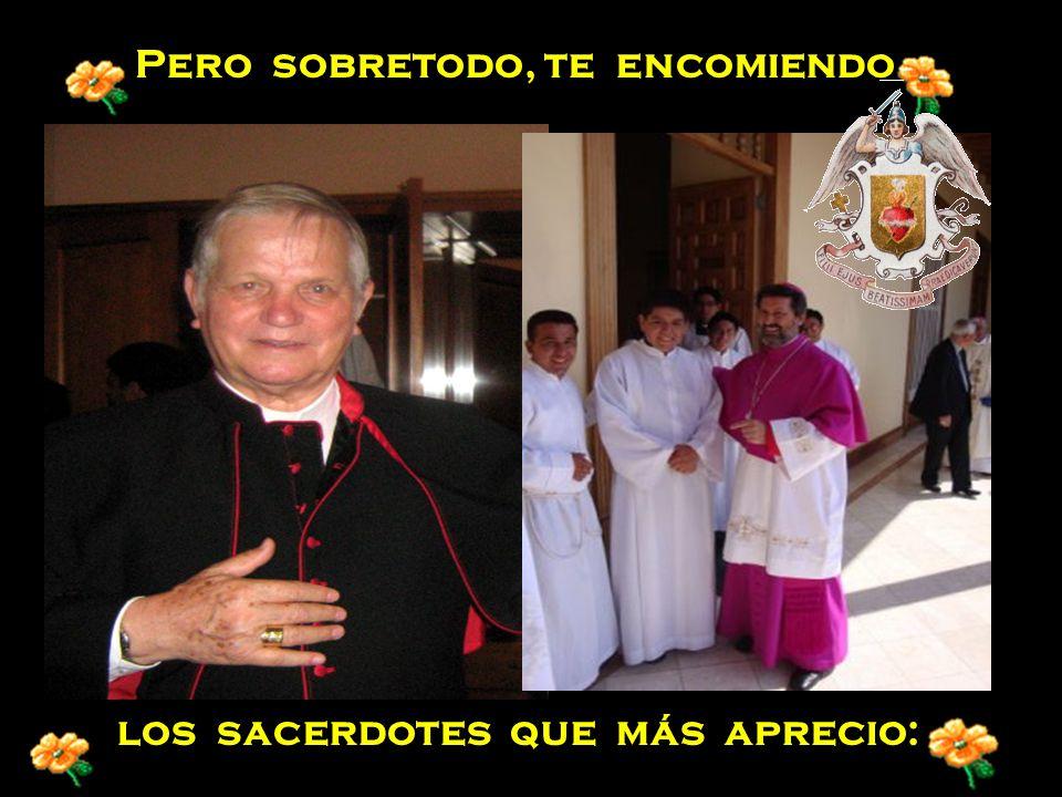 o por los que estén a punto de morir así como por las almas de sacerdotes en el purgatorio.