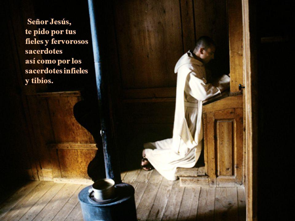 Señor Jesús, te pido por tus fieles y fervorosos sacerdotes así como por los sacerdotes infieles y tibios.