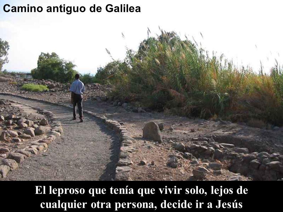 Camino antiguo de Galilea El leproso que tenía que vivir solo, lejos de cualquier otra persona, decide ir a Jesús