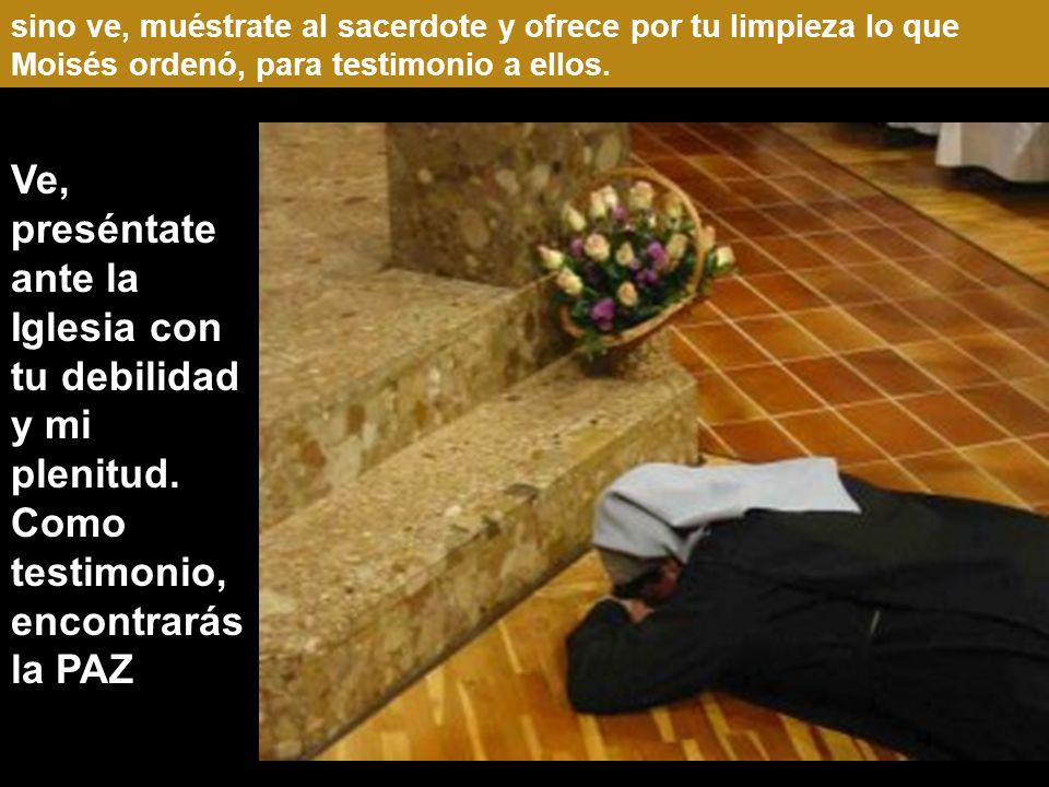 sino ve, muéstrate al sacerdote y ofrece por tu limpieza lo que Moisés ordenó, para testimonio a ellos.
