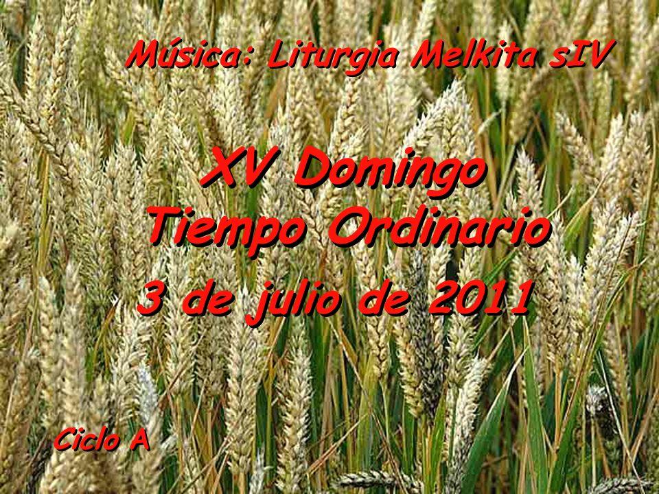 Ciclo A XV Domingo Tiempo Ordinario XV Domingo Tiempo Ordinario 3 de julio de 2011 Música: Liturgia Melkita sIV